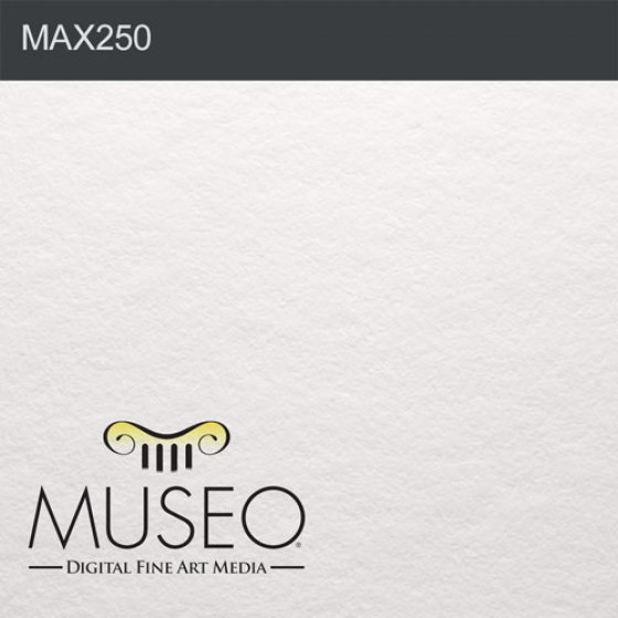Museo Max by Crane