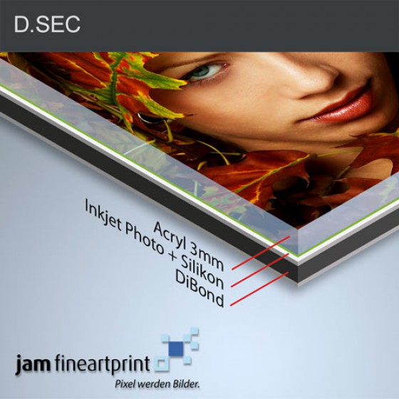 DSEC Fine Art Acryl