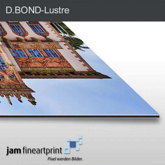 D.BOND Lustre Bild auf Dibond komplett